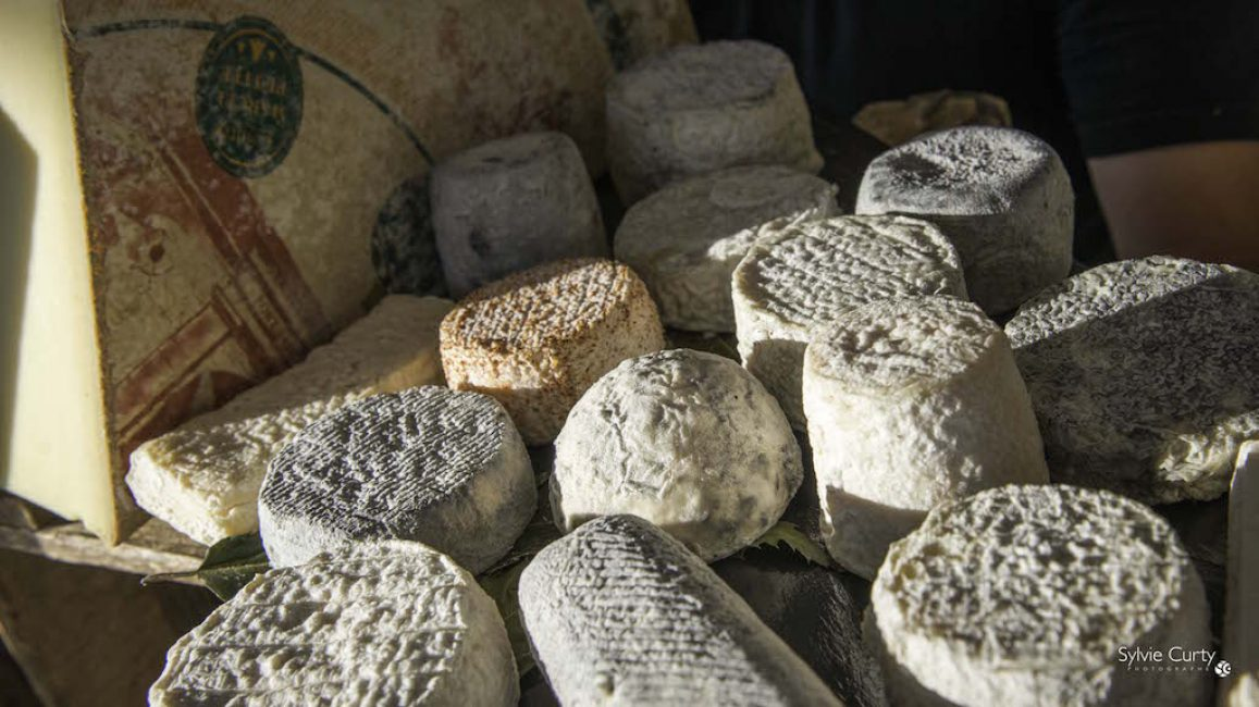 Buffet fromages fromagerie l'épicurium La Rochelle (56)