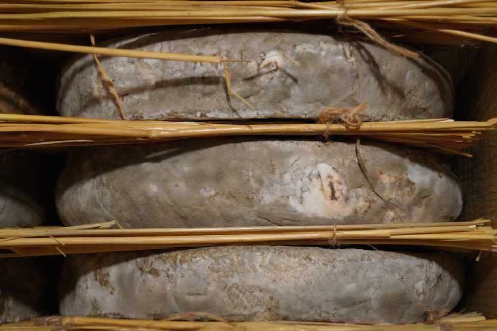 cave affinage fromages l'épicurium la Rochelle 1 (53)