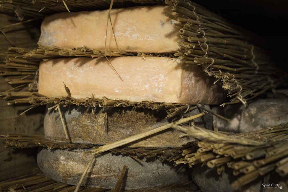cave affinage fromages l'épicurium la Rochelle 1 (70)