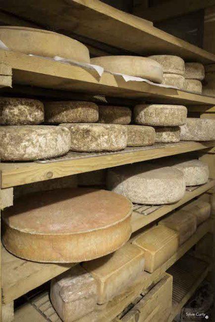 cave affinage fromages l'épicurium la Rochelle 1 (88)