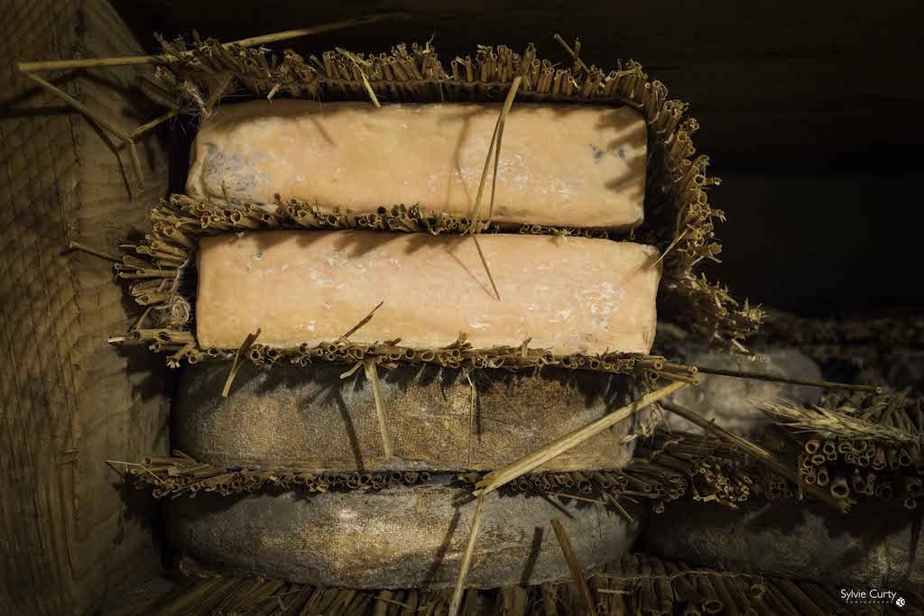 cave affinage fromages l'épicurium la Rochelle 1 (24)