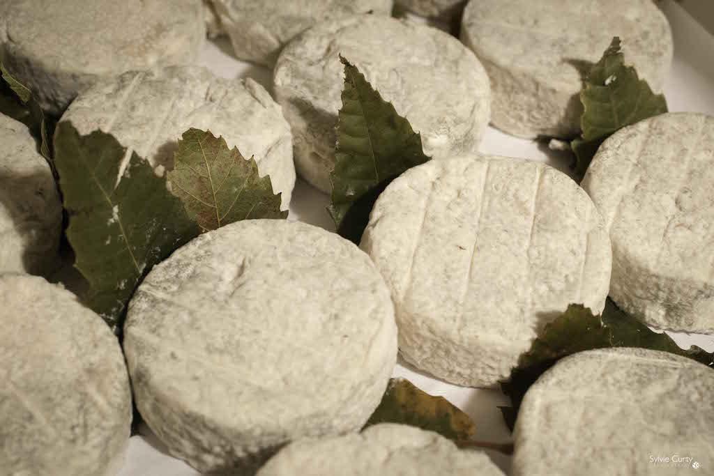 cave affinage fromages l'épicurium la Rochelle 1 (37)