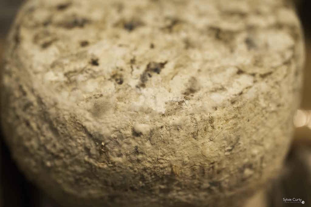 cave affinage fromages l'épicurium la Rochelle 1 (44)